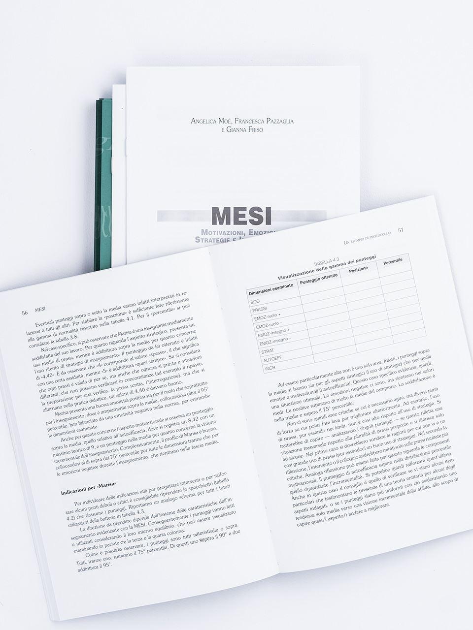 MESI - Motivazioni, Emozioni, Strategie e Insegnam - Libri - Erickson 2