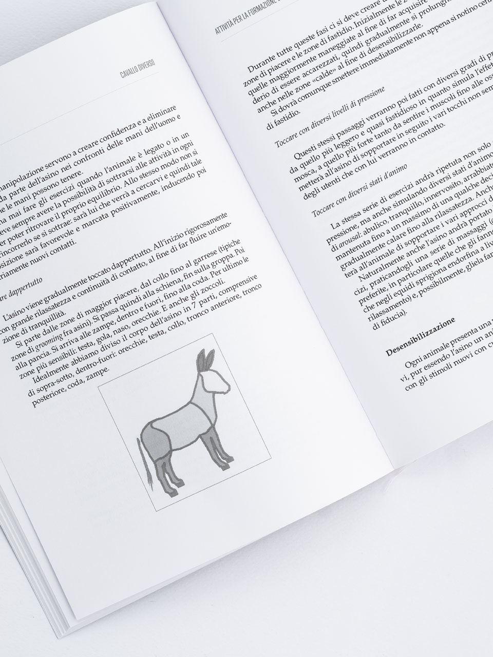 Cavallo diverso - Libri - Erickson 2