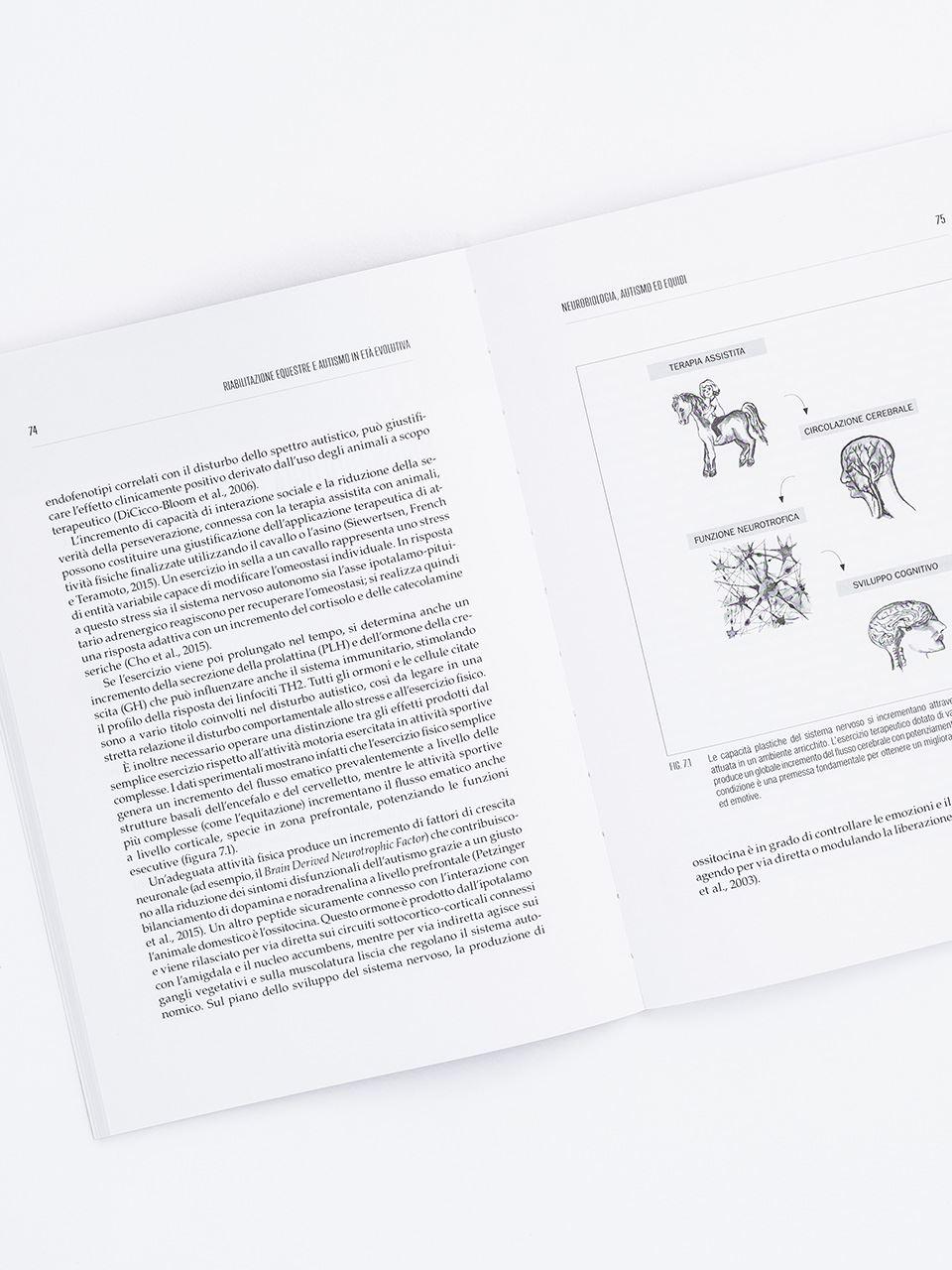Riabilitazione equestre e autismo in età evolutiva - Libri - Erickson 2