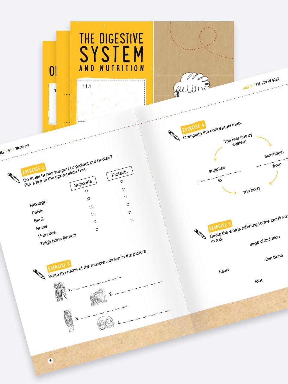 CLIL with LAPBOOK - SCIENCE - Classe quinta - Libri - Erickson 4