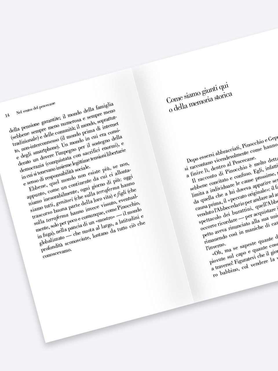 Nel ventre del Pescecane - Libri - Erickson 2