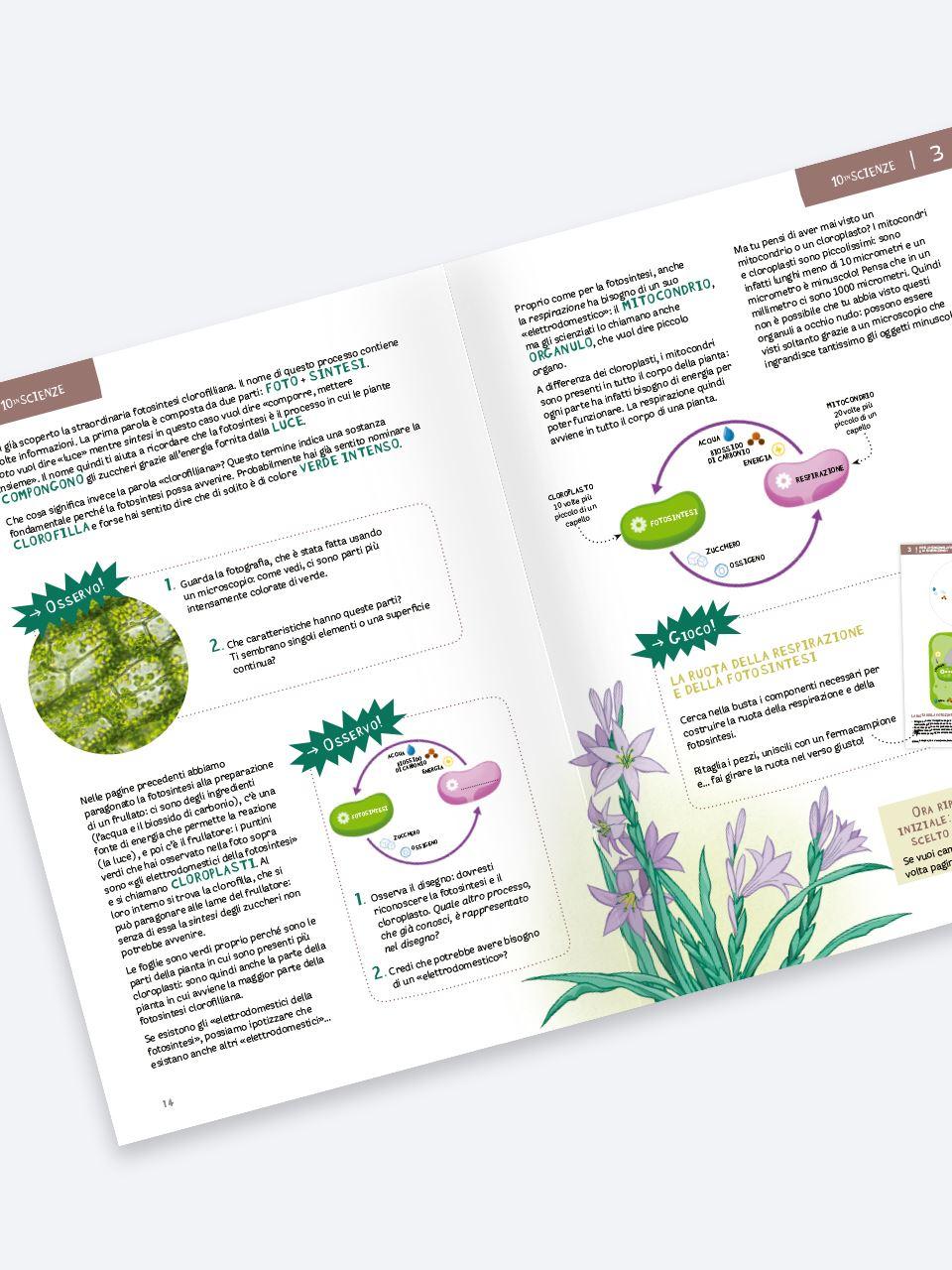 10 in scienze - Le piante - Libri - Erickson 2