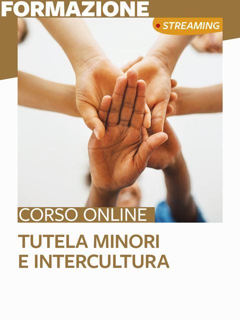 Tutela minori e intercultura: lavorare con le famiglie di minoranza etnica - Formazione per docenti, educatori, assistenti sociali, psicologi - Erickson