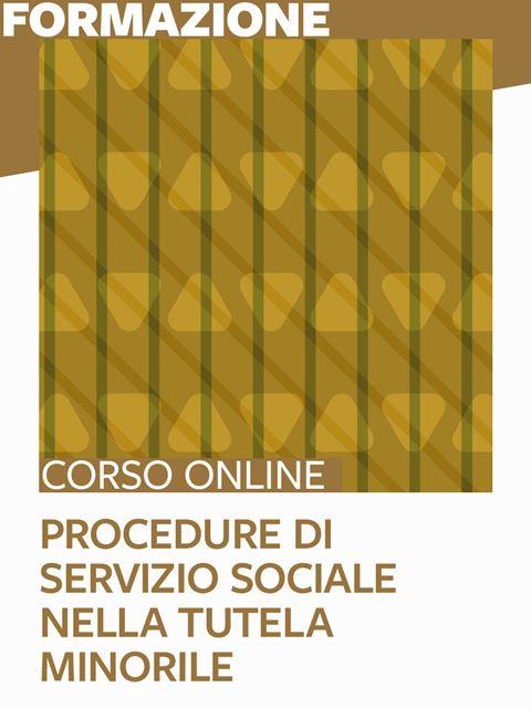 Procedure di servizio sociale nella tutela minorile - Formazione per docenti, educatori, assistenti sociali, psicologi - Erickson