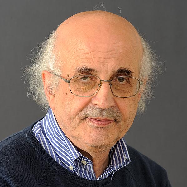 Flavio Fogarolo - Flavio Fogarolo - Erickson