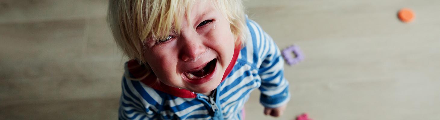Quando i bambini iniziano a parlare tardi - Erickson 2