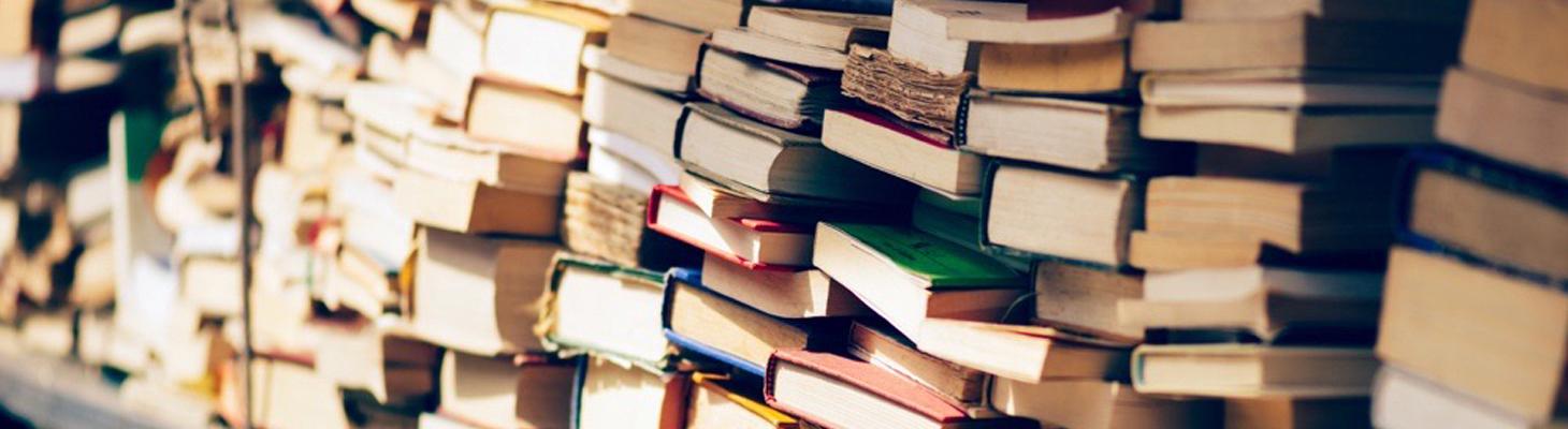Educazione letteraria a distanza - Erickson.it 2
